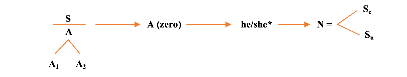 Figura_1._INGLES._Esquema_arreglado.png